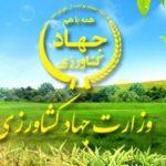 وزارت جهاد باید نقش هدایت، حمایت و نظارت را در کشاورزی داشته باشد