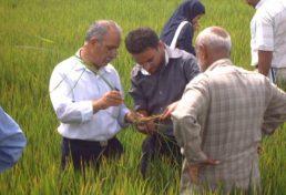 سرنوشت فارغ التحصیلان کشاورزی به چه کسانی سپرده خواهد شد؟