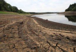 ضرورت توجه به کشت فراسرزمینی در بحران آبی