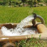 وجود چهار و نیم بهره بردار در بخش کشاورزی