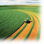 گردش مالی پانزده میلیارد تومانی سالانه سازمان نظام مهندسی کشاورزی