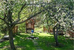 اجرای برنامه اصلاح و نوسازی نهصد هزار هکتار باغات کشور