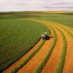 نقش پر رنگ بخش کشاورزی در دوران تحریم