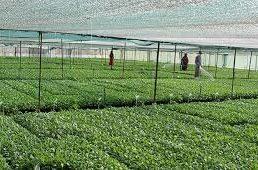 واگذاری زمین به فارغ التحصیلان رشته کشاورزی در قم