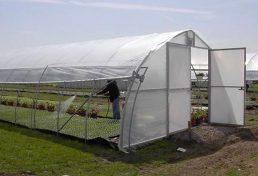 تسهیل در فرآیند صدور مجوز گلخانهها