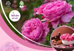 دومین کنفرانس بین المللی گل محمدی