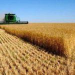 بازرسی دفاتر خدمات کشاورزی غیردولتی در مرودشت