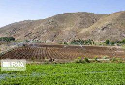 راه اندازی مراکز خدمات کشاورزی در پنجاه و یک دهستان خراسان جنوبی