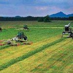تولید پنج میلیون تن محصولات کشاورزی با کاهش زیر کشت در آذربایجانشرقی