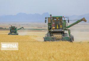 پیشبینی برداشت نوزده هزار تن گندم در گمیشان و چند خبر از گلستان