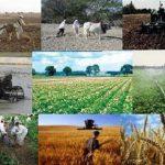 راه اندازی کانون های اشاعه فناوری های نوین کشاورزی در اصفهان
